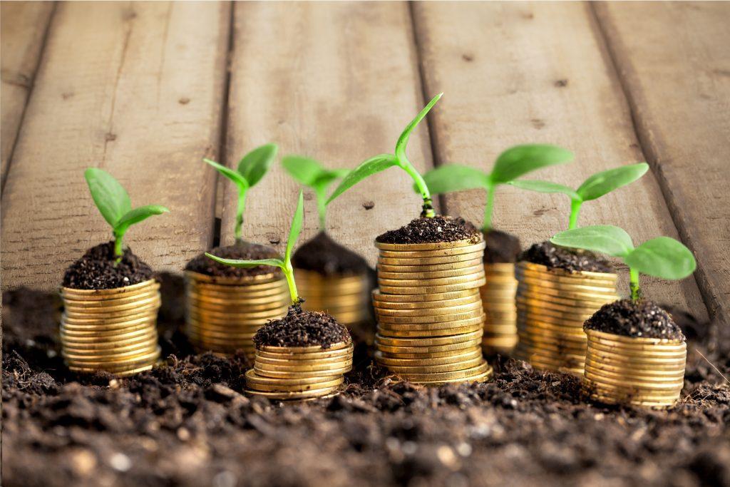 Investir dans les sites de niche